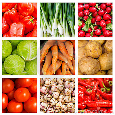 Vetrina di verdure fresche e bollite di stagione